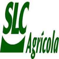 Menor Aprendiz SLC