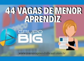 Menor Aprendiz Grupo Big